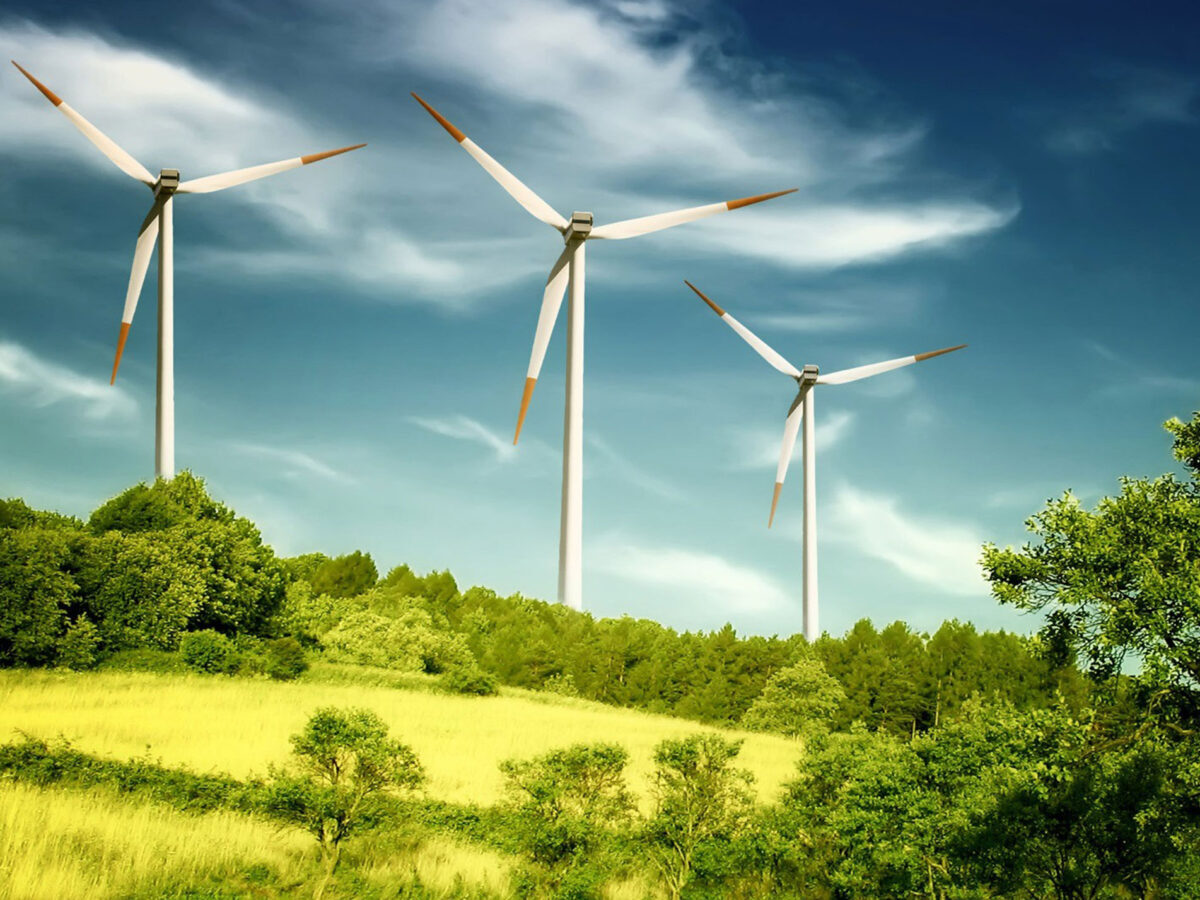 """Ururi"" Wind Farm"